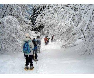 neige fraiche et raquette à neige - courchevel