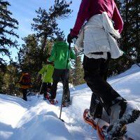 excursion raquette à neige courchevel la tania
