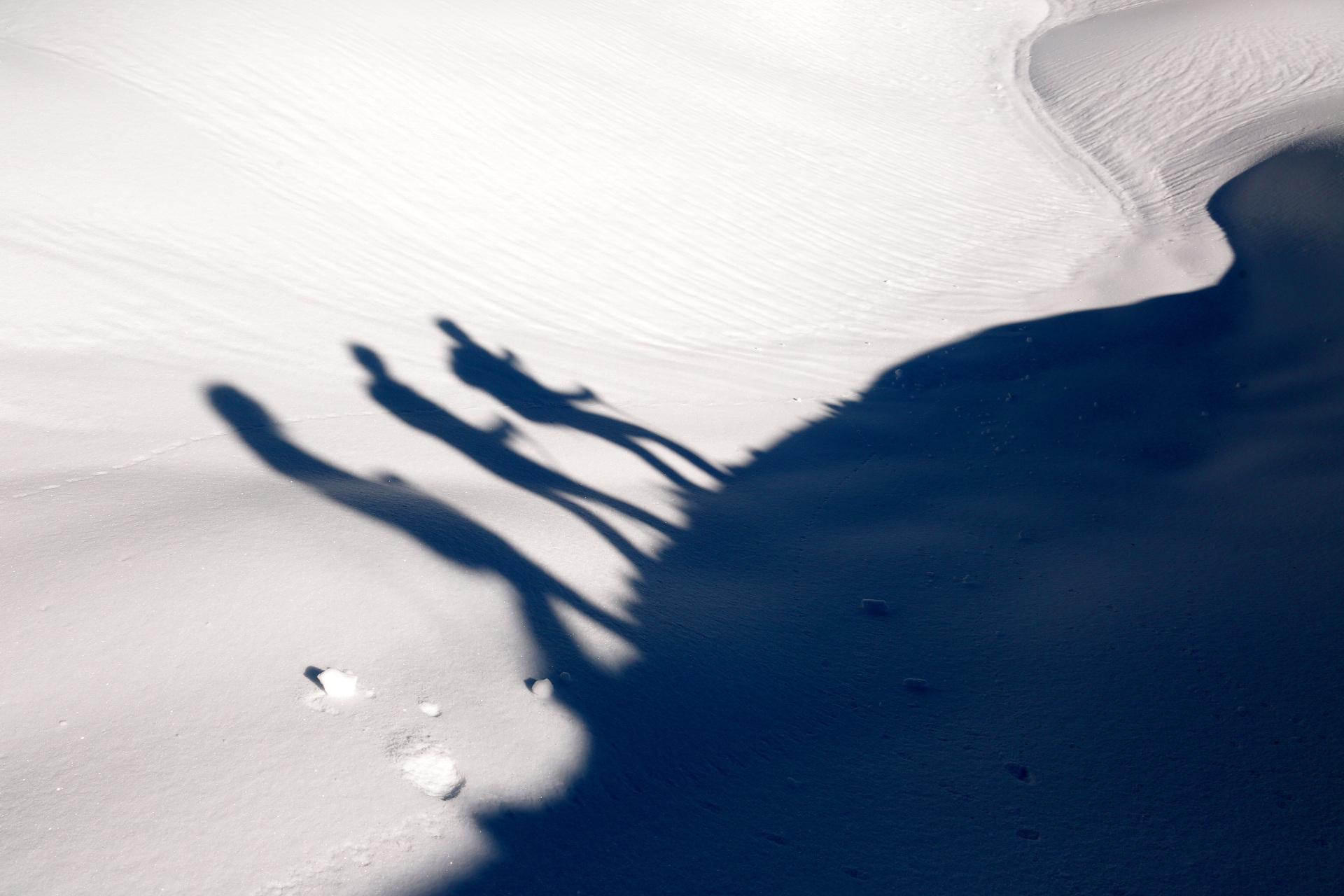 ombre raquette à neige - sorties guidées raquette evasion