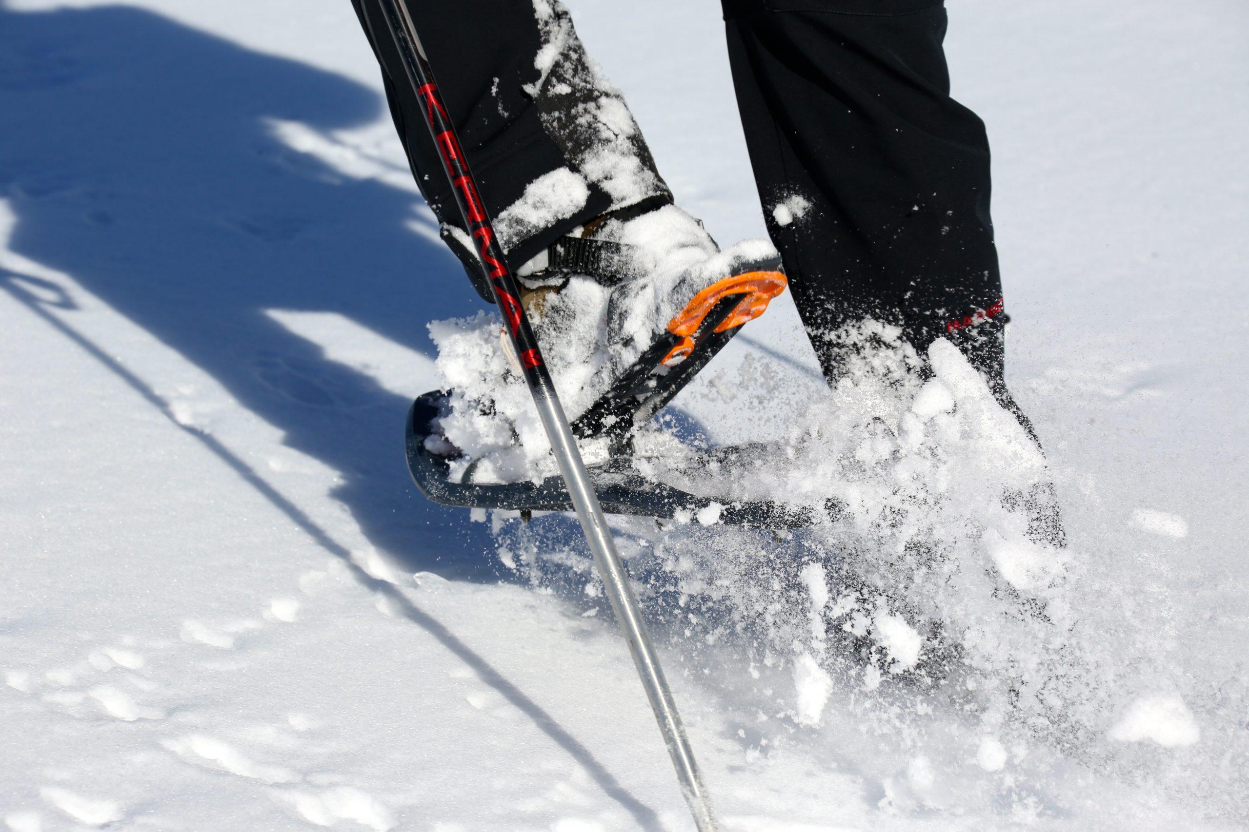 raquette à neige en poudreuse hors itinéraire