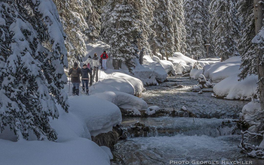 Raquette à neige lac de la Rosière à  Courchevel
